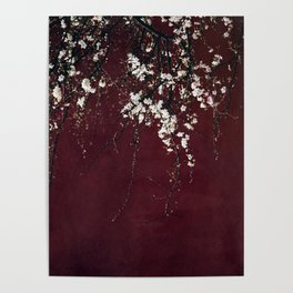 blossoms on ruby red Poster