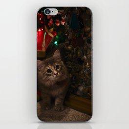 Kitten for Christmas iPhone Skin