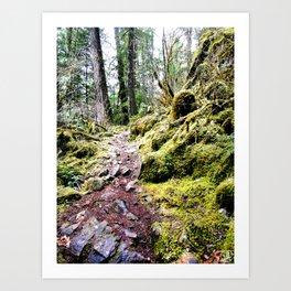 Rocky Trail Art Print