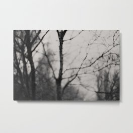 the silence of the forest ... Metal Print
