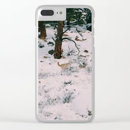 Coyotes on the hunt Clear iPhone Case