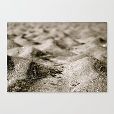 Ant's Perspective  Canvas Print