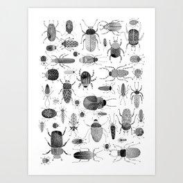 Ink Beetles Art Print