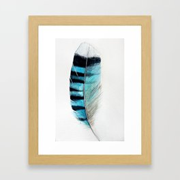 Blue Jay Feather - Watercolor Framed Art Print