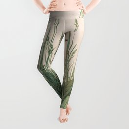 Albrecht Durer - The Large Piece of Turf Leggings
