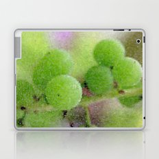 Green Grapes Laptop & iPad Skin