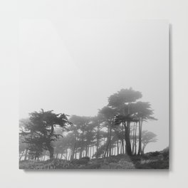 Land's End in the Mist Metal Print