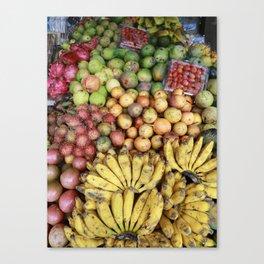 fruitsicles Canvas Print