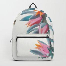 Succulent Cluster Backpack