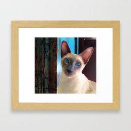 my best shot Framed Art Print