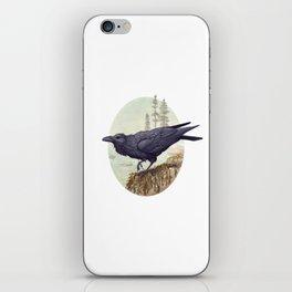 Raven of the North Atlantic iPhone Skin
