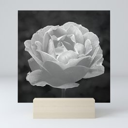 Silver Satin Rose - My Love For You Mini Art Print