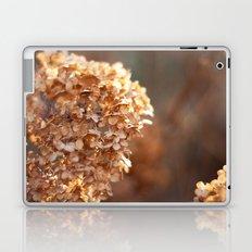 Winter Hydrangea III Laptop & iPad Skin