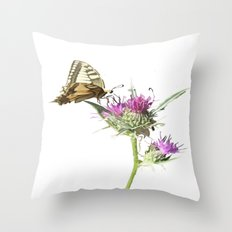 Scarce Swallowtail Butterfly and Thistle Background Removed Throw Pillow