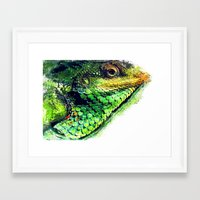 chameleon Framed Art Prints featuring chameleon by jbjart