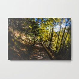 Spinning Around the Nature Metal Print