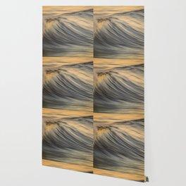 Slow Dog Wallpaper