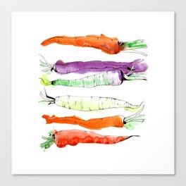 Rainbow Gardens: Carrots Canvas Print