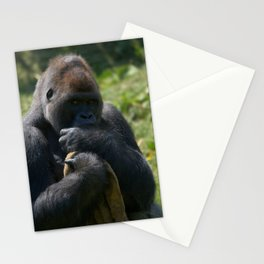 Silverback Gorilla And His Blanket Stationery Cards