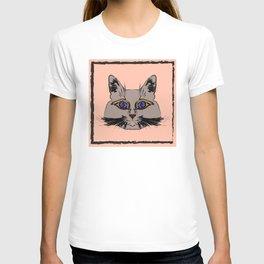 Cute gray cat. Muzzle cartoon cat in a box. T-shirt