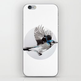 Blue Jay iPhone Skin