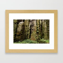 Natural green wall Framed Art Print