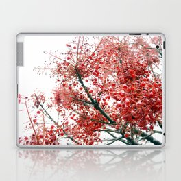 Star Berries Laptop & iPad Skin