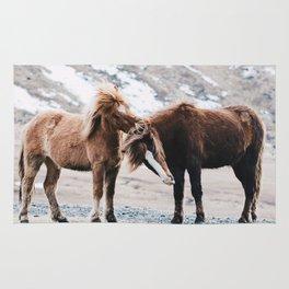 Pony Rug