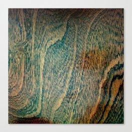 Old wood flooring Canvas Print