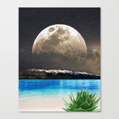 Aloe Vera Moon Beach Canvas Print