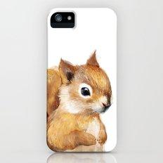 Little Squirrel Slim Case iPhone (5, 5s)