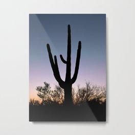 Sunset Cacti Metal Print