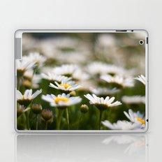 Daisy Field Laptop & iPad Skin