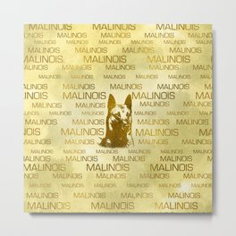 Golden Belgian Malinois - Mechelaar  - Maligator Metal Print