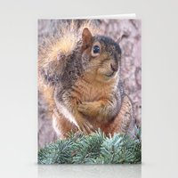 squirrel Stationery Cards featuring Squirrel by Sarahpea