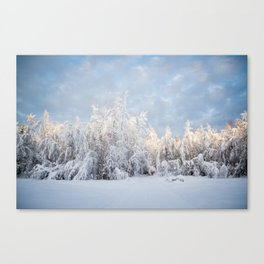 Snowy Tree Horizion Canvas Print