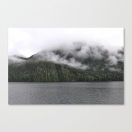 Cloudy Forest 2 Canvas Print