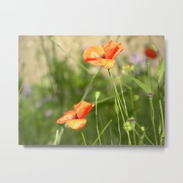 Little Wild Flowers  Metal Print