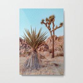 Afternoon Delight 1 - Joshua Tree Metal Print