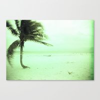 palm Canvas Prints featuring Palm by Julia Aufschnaiter