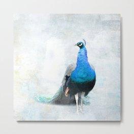 Simple Luxury Peacock Art Metal Print