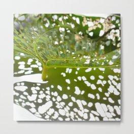 Leaf Light I Metal Print