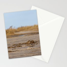 At the beach 1 Stationery Cards