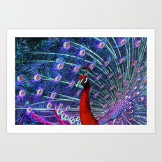 A Different Kind of Peacock Art Print