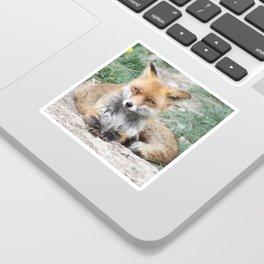 Fox_20141201_by_JAMFoto Sticker