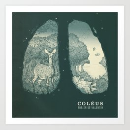 Coleus Art Print