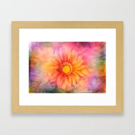 Colourful life Framed Art Print