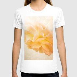 Roses forever T-shirt