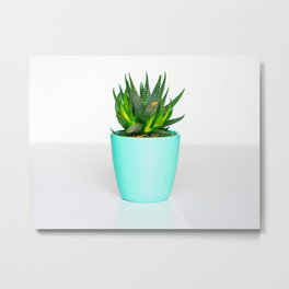 Minimalist, Cactus, Aloe, Vera, Turquoise, Pot Metal Print
