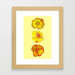 Three Irises Framed Art Print